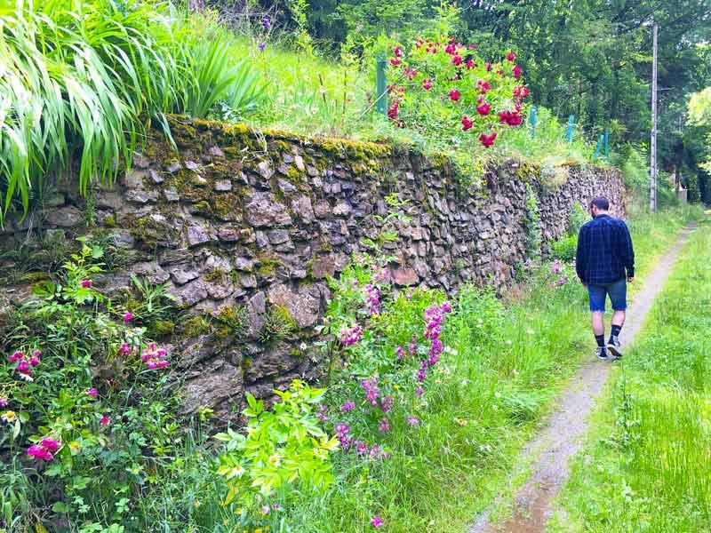 Chemin de campagne Auvergne blog lifestyle