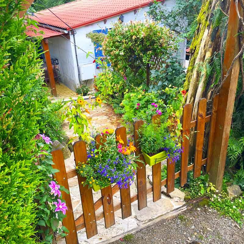 Fleurs Auvergne blog lifestyle